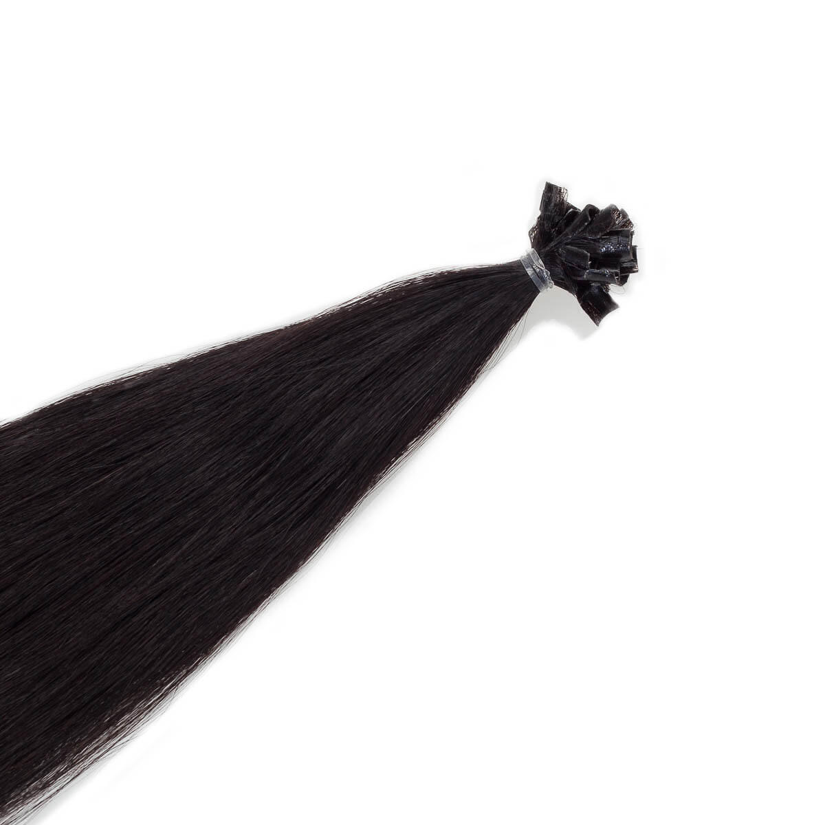 Bondings Premium Glatt 1.2 Black Brown 60 cm